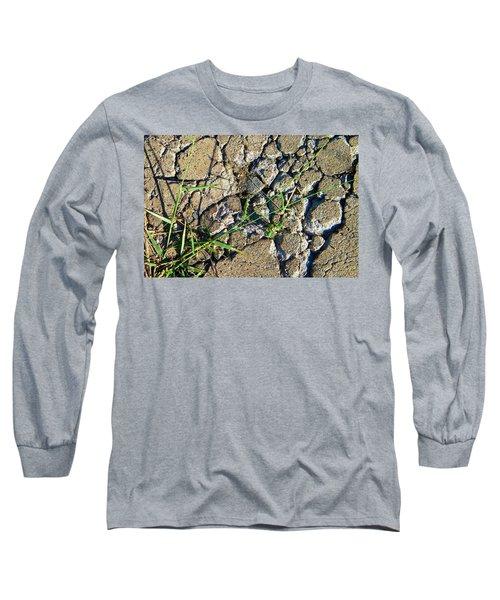 Pushing Through Concrete Long Sleeve T-Shirt by Lenore Senior