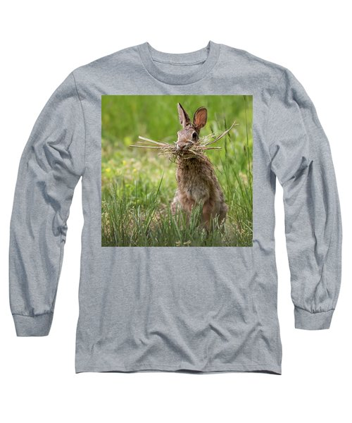 Rabbit Collector Square Long Sleeve T-Shirt by Terry DeLuco