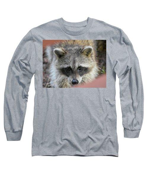 Raccoon's Gorgeous Face Long Sleeve T-Shirt