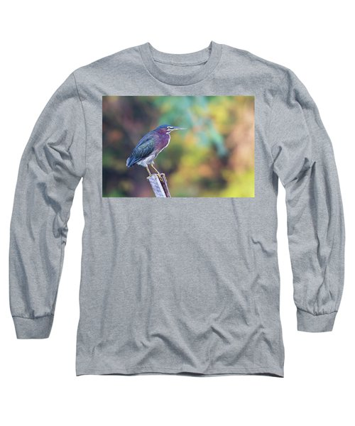 Rainbow Heron Long Sleeve T-Shirt