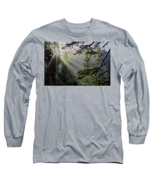 Morning Rays Through An Oregon Rain Forest Long Sleeve T-Shirt