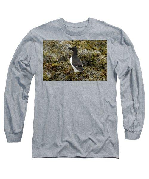 Razorbill Long Sleeve T-Shirt by Judd Nathan