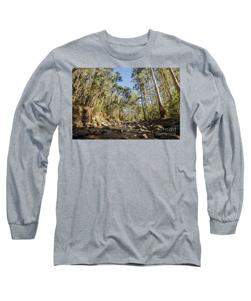 Long Sleeve T-Shirt featuring the photograph Reaching Skyward by Linda Lees
