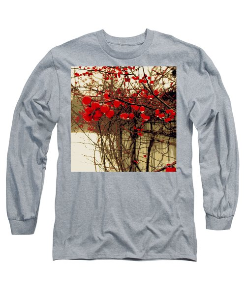 Red Berries In Winter Long Sleeve T-Shirt by Susan Lafleur