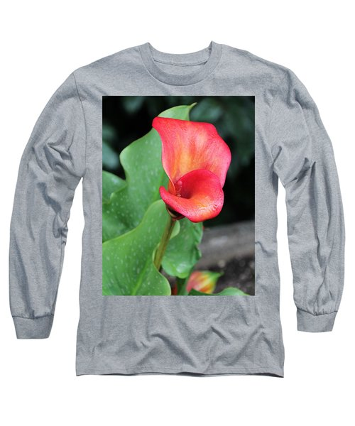 Long Sleeve T-Shirt featuring the photograph Red Calla Lily by Katie Wing Vigil