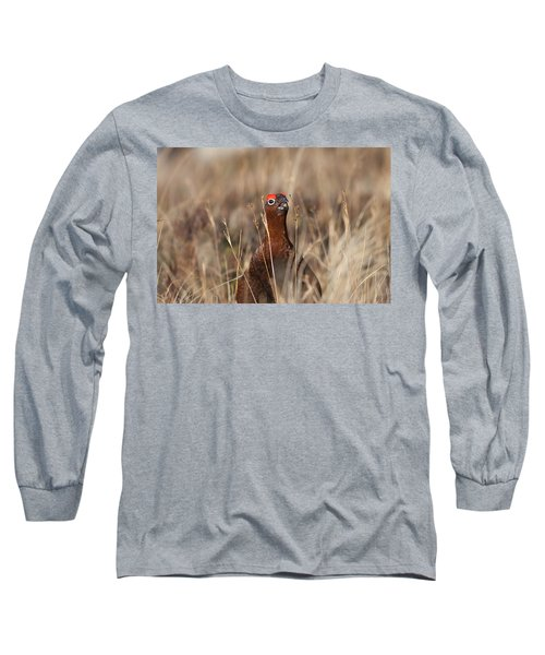 Red Grouse Calling Long Sleeve T-Shirt