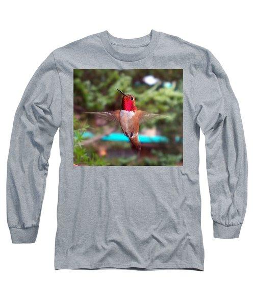 Red Hummingbird Long Sleeve T-Shirt by Joseph Frank Baraba
