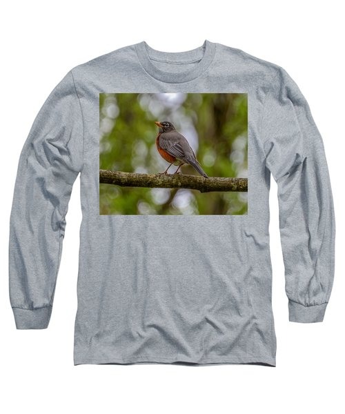 Long Sleeve T-Shirt featuring the photograph Red Robin by Jerry Cahill