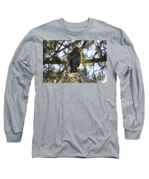 Red Shouldered Hawk Fledgling Long Sleeve T-Shirt