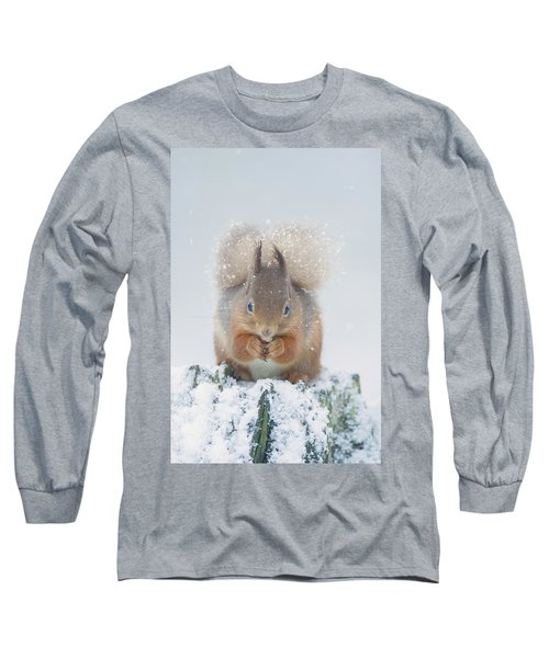 Red Squirrel Nibbles A Nut In The Snow Long Sleeve T-Shirt