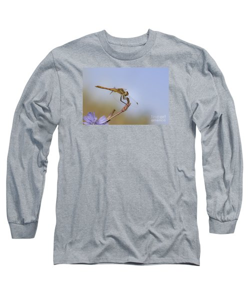 Long Sleeve T-Shirt featuring the photograph Red Veined Darter Dragonfly by Jivko Nakev