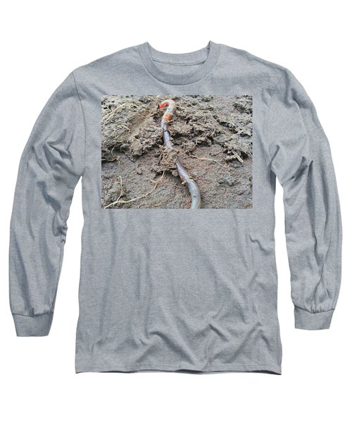 Long Sleeve T-Shirt featuring the photograph Red Wiggler by Robert Knight