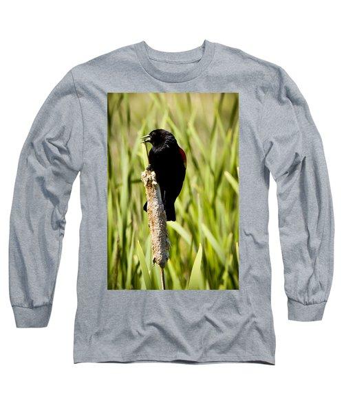 Red-winged Blackbird Long Sleeve T-Shirt