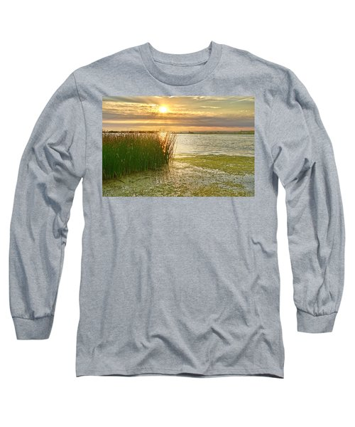 Reeds In The Sunset Long Sleeve T-Shirt