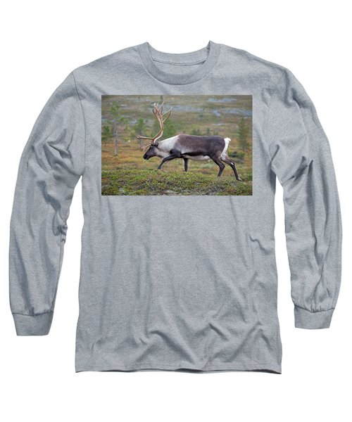 Reindeer Long Sleeve T-Shirt by Aivar Mikko