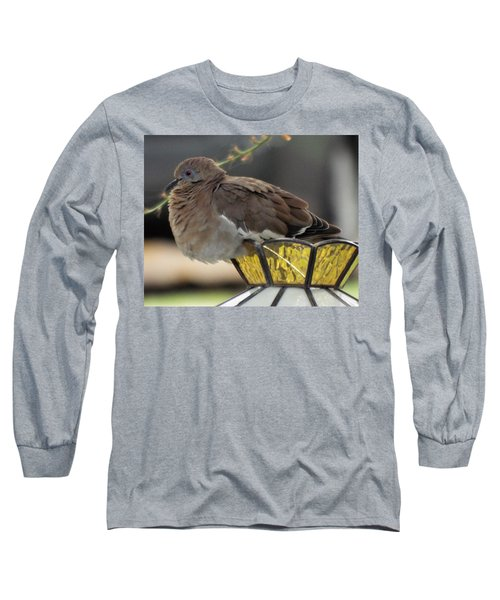 Resting Dove Long Sleeve T-Shirt