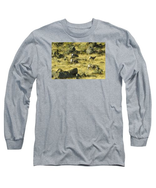 Roaming Free Long Sleeve T-Shirt by Dale Stillman