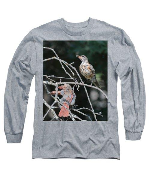 Robin And Cardinal 2664 Long Sleeve T-Shirt