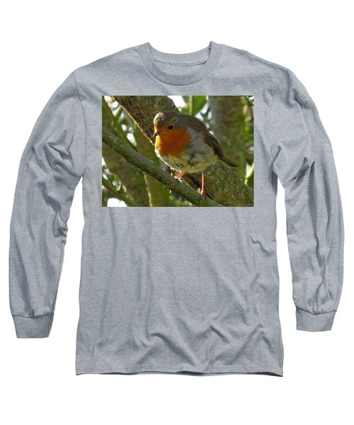 Robin In A Tree Long Sleeve T-Shirt