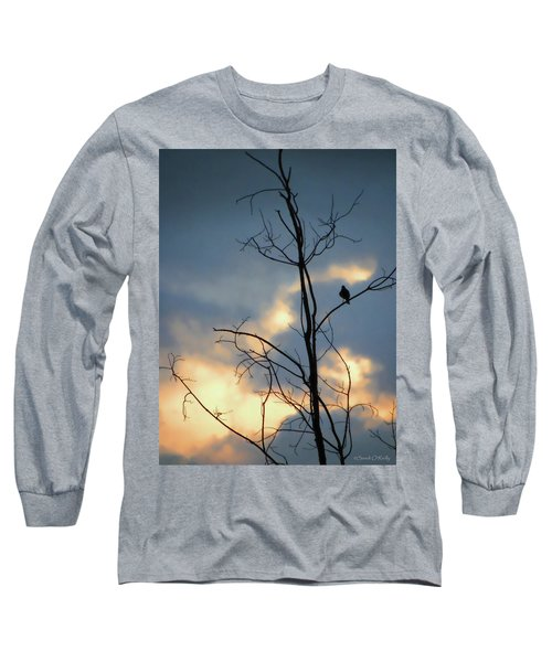 Long Sleeve T-Shirt featuring the photograph Robin Watching Sunset After The Storm by Sandi OReilly