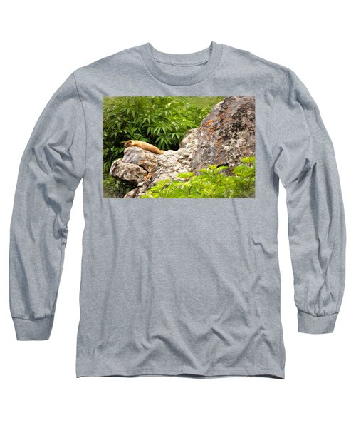 Rock Chuck Long Sleeve T-Shirt by Lana Trussell