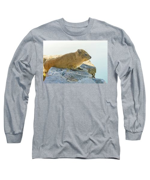 Rock Hyrax On Table Mountain Cape Town South Africa Long Sleeve T-Shirt