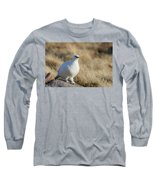 Long Sleeve T-Shirt featuring the photograph Rock Ptarmigan by Karen Van Der Zijden