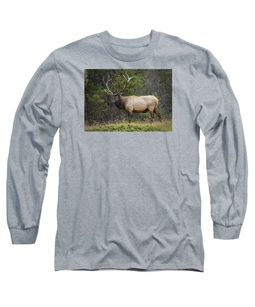 Rocky Mountain National Park Bull Elk Long Sleeve T-Shirt by John Vose
