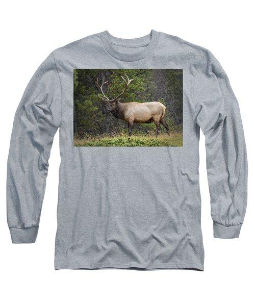 Rocky Mountain National Park Bull Elk Long Sleeve T-Shirt
