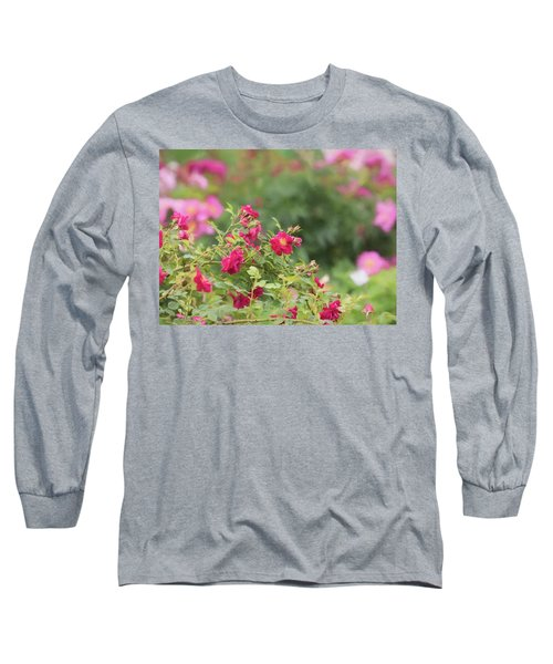 Long Sleeve T-Shirt featuring the photograph Rose Garden Promise by Kim Hojnacki