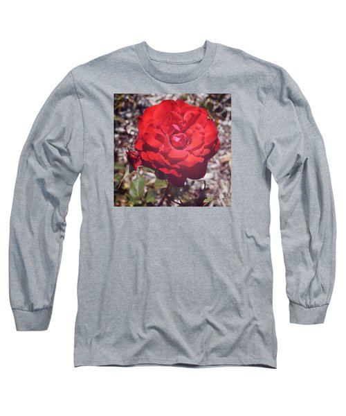 Long Sleeve T-Shirt featuring the photograph Roses Are Red by Cassandra Buckley