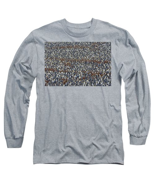 Long Sleeve T-Shirt featuring the photograph Royal Layers by Tony Beck