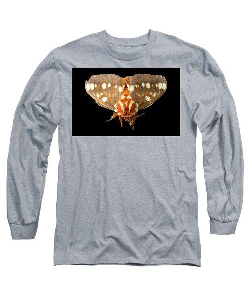 Royal Walnut Moth On Black Long Sleeve T-Shirt
