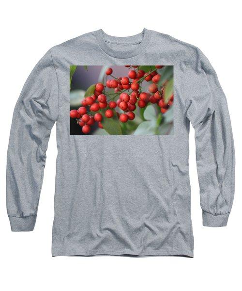 Ruby Red Berries Long Sleeve T-Shirt