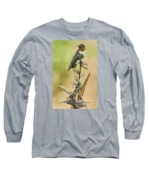 Long Sleeve T-Shirt featuring the painting Ruby Throated Hummingbird Study by Phyllis Beiser