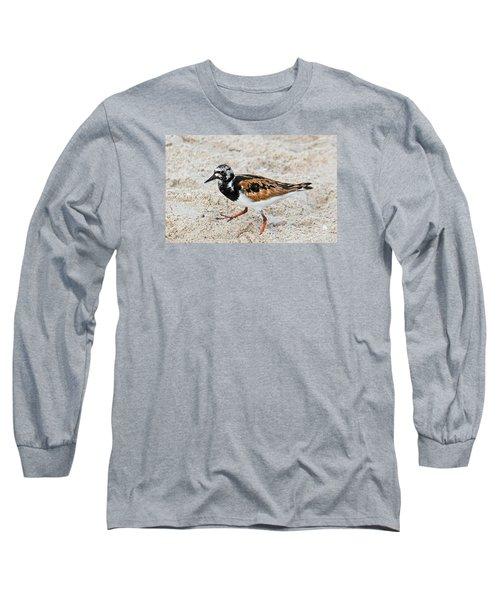Ruddy Turnstone Long Sleeve T-Shirt by Kenneth Albin