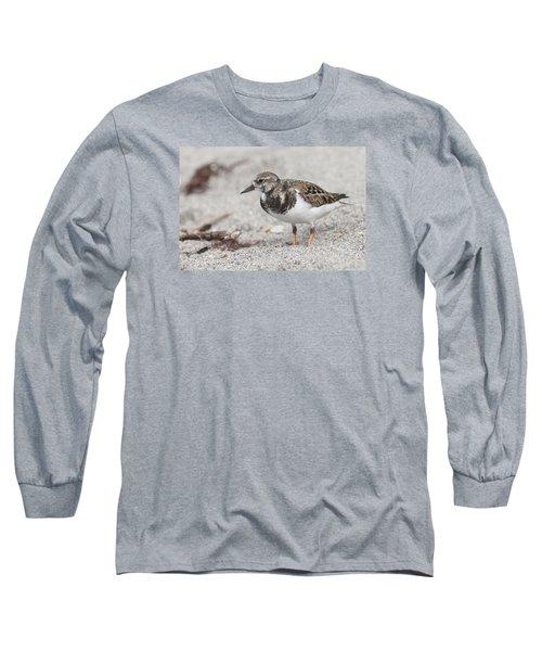 Ruddy Turnstone On The Beach Long Sleeve T-Shirt