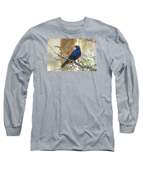 Long Sleeve T-Shirt featuring the photograph Ruppels Glossy Starling by Pravine Chester