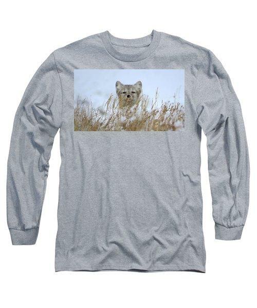 Sachs Harbour Fox Long Sleeve T-Shirt