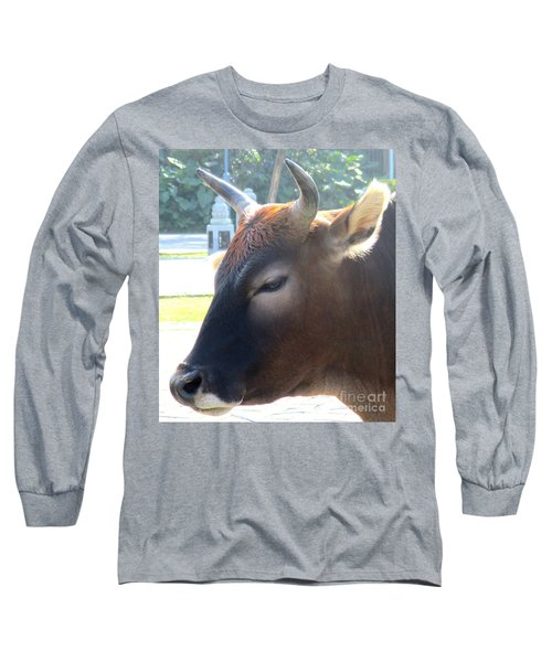 Long Sleeve T-Shirt featuring the photograph Sacred Cow 4 by Randall Weidner