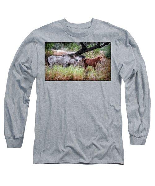 Salt River Wild Horses Long Sleeve T-Shirt