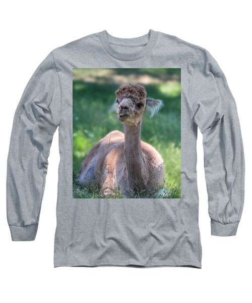 San Juan Alpaca Shear Heaven Long Sleeve T-Shirt