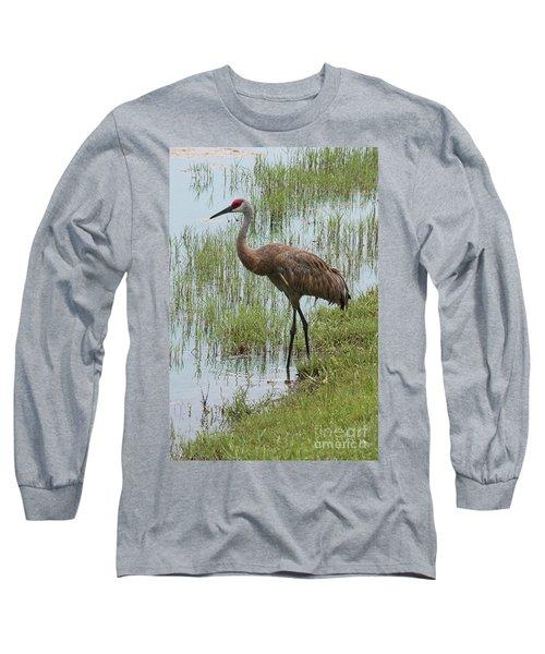 Sandhill In The Marsh Long Sleeve T-Shirt