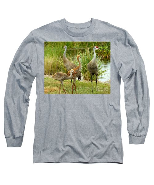 Sandhill Cranes On Alert Long Sleeve T-Shirt