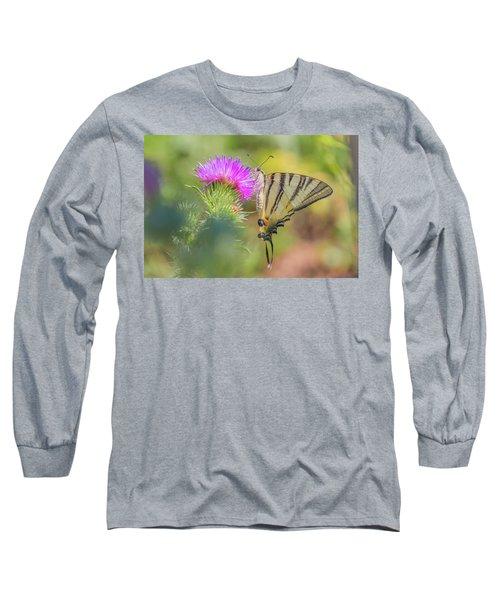 Scarce Swallowtail - Iphiclides Podalirius Long Sleeve T-Shirt