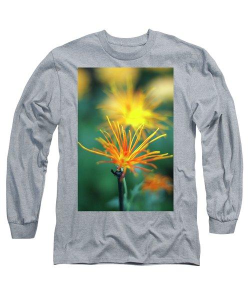 Scraggly Mum Long Sleeve T-Shirt