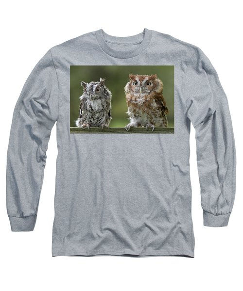 Screech Owl Pair Long Sleeve T-Shirt