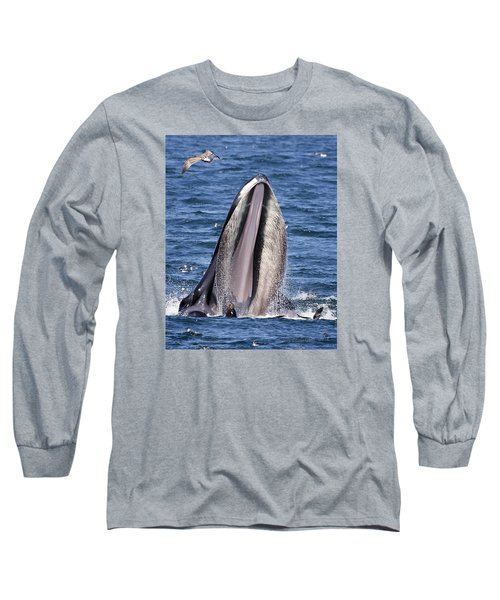 Sea Lions Are Friends, Not Food Long Sleeve T-Shirt