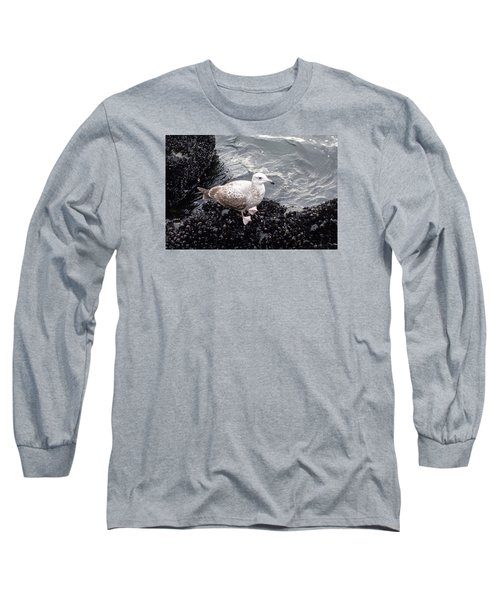 Seagull And Mussels Long Sleeve T-Shirt by Melinda Saminski
