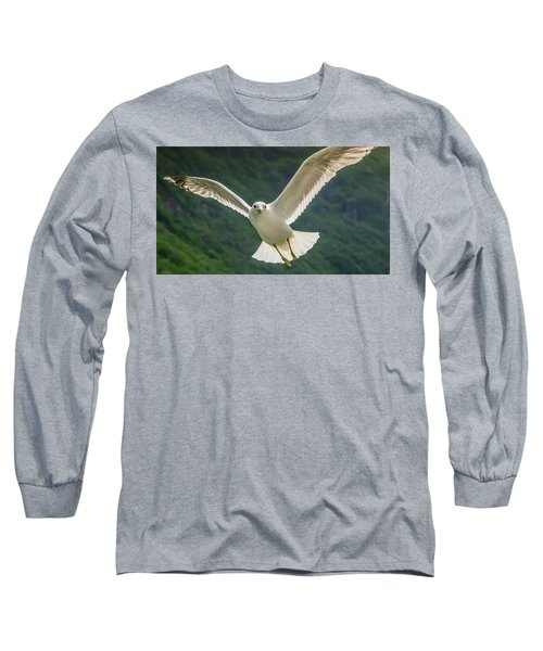 Seagull At The Fjord Long Sleeve T-Shirt by KG Thienemann
